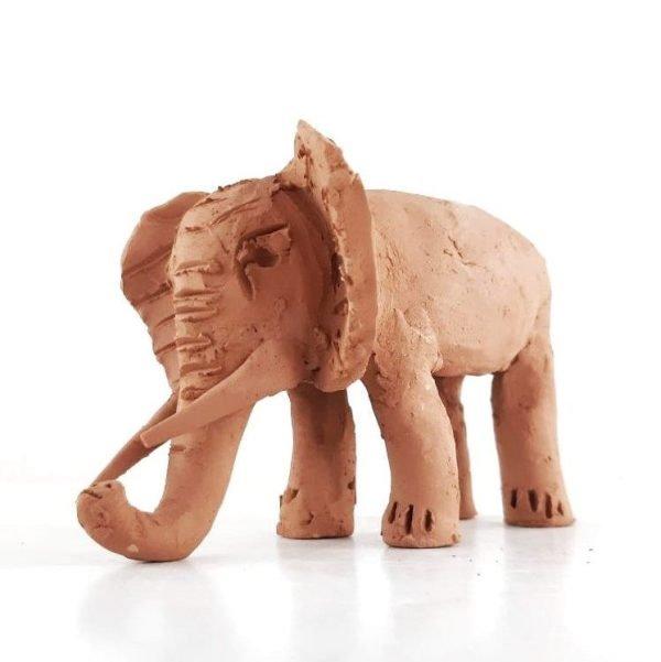 Modelling elephant